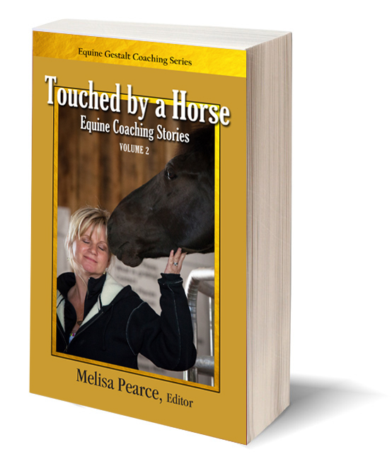 touched-by-horse-cover