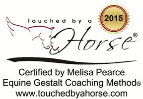 Certified Equine Gestalt Coach
